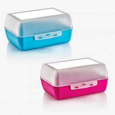 Пластмасова кутия за сандвичи голяма 18,5x14x9см различни цветове (CM-720) -  Irak Plastik