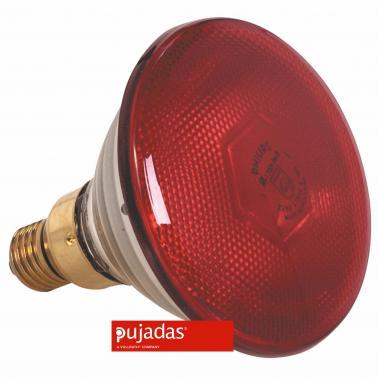 Крушка червена 250W - Pujadas