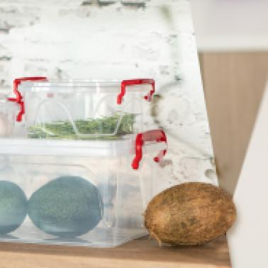 Кутии за съхранение на храна